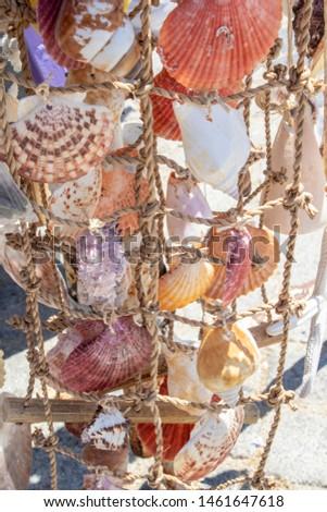 Sea shells handmade ornament handmade. Ayvalik was taken on the island of Cunda. #1461647618