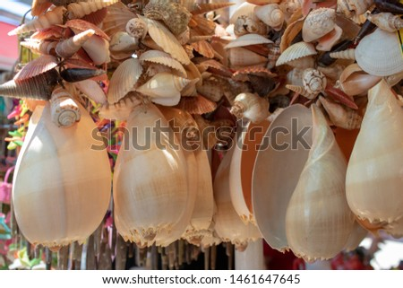 Sea shells handmade ornament handmade. Ayvalik was taken on the island of Cunda. #1461647645
