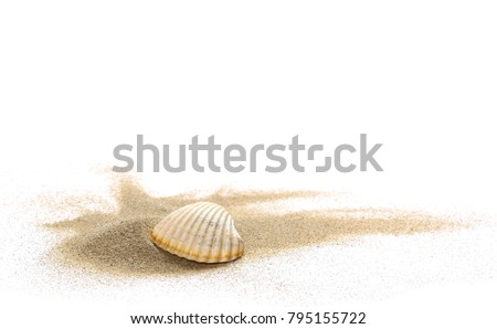Sea shells in sand pile isolated on white background #795155722