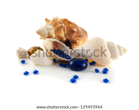 Sea shells isolated on white background (collection). With blue crystals (decorative diamonds). Decorative composition.