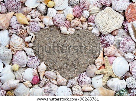 Sea shells making a frame in the shape of a heart