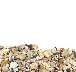 sea shells stones