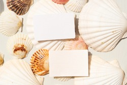 Sea shells styled stock scene, template for wedding invitations or stylish presentation with copy space on blank cards
