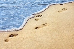 Sea shore. Human footprints on a sandy beach. Shallow depth of field. Focus on the center of the image