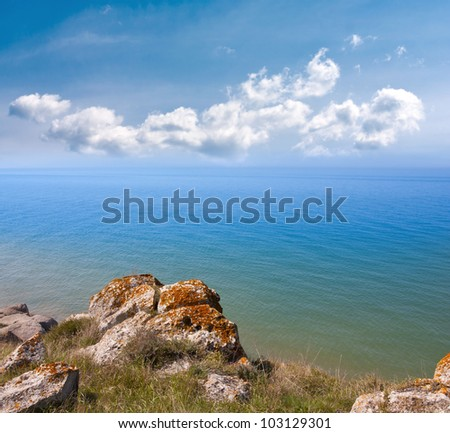 sea shore in nice summer day
