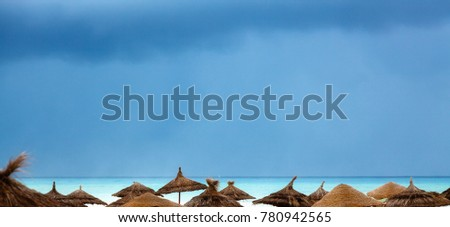 Sea shore with beach umbrellas is under a blue sky #780942565