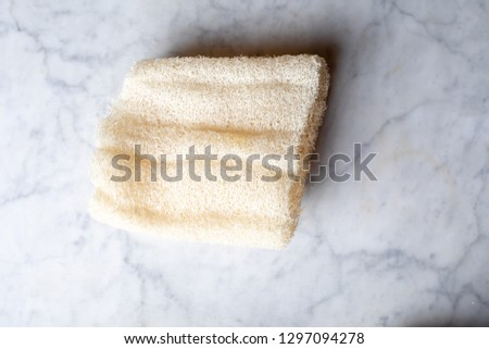 sea sponges on marble background