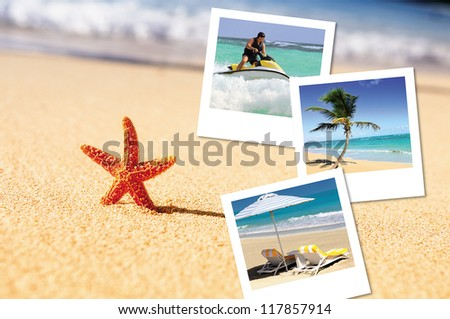 sea, starfish, sea outdoor with hlidays pics