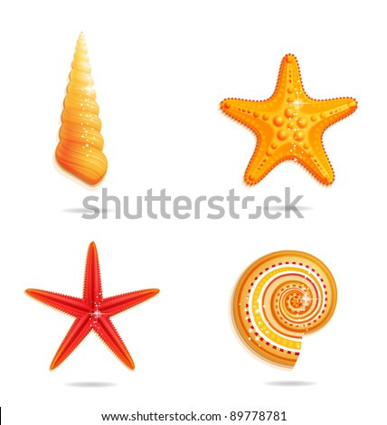 sea stars and sign set