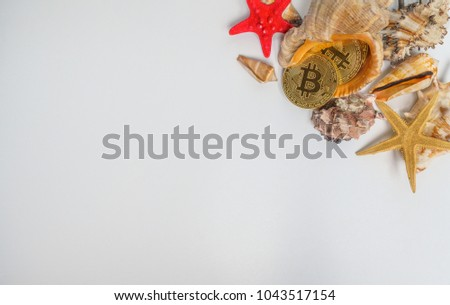 Sea stars collection on white background with place for text #1043517154