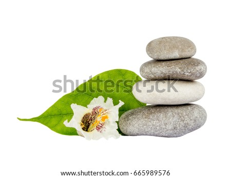 Sea stones with leaf isolated on white background. Concept of harmony and tranquility. Foto stock ©