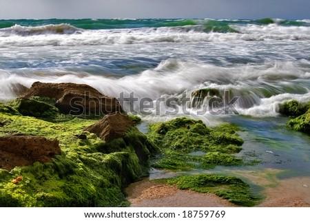 Sea surf is washing backward stones