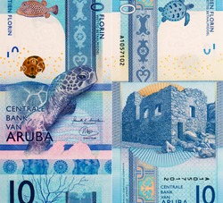 Sea Turle , Trunkfish , coral, Portrait from Aruba 10 Florin 2019 Banknotes