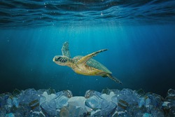 Sea turtle swimming in ocean invaded by plastic bottles. Pollution in oceans concept.