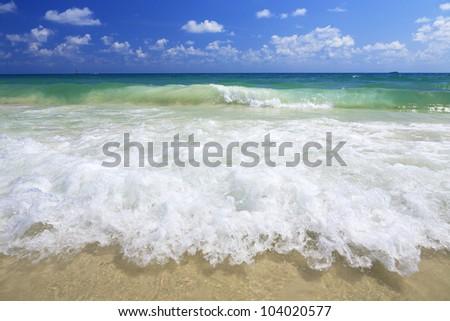 sea wave on the beach