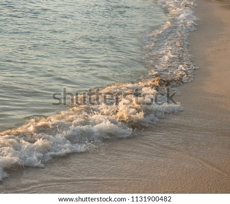 Sea wave with white foam is on a sandy beach at sunset. It`s a beautiful sea low tide with natural sun lighting. Relaxing and soothing view.