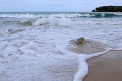 Sea Waves braking in beautiful beach