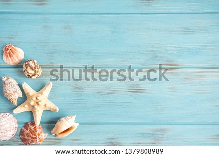 Sea wooden background of blue color with seashells. Natural seashells with copy space. The basis for the design of the marine banner, greeting card. Postcard from travel