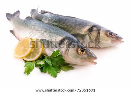 Seabass, Dicentrarchus labrax - stock photo