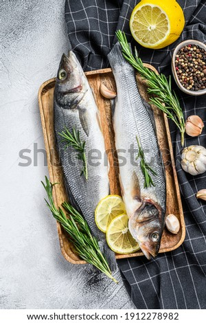 Seabass fish with herbs, raw sea bass. Gray background. Top view Photo stock ©