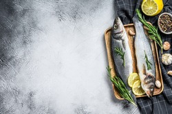 Seabass fish with herbs, raw sea bass. Gray background. Top view. Copy space