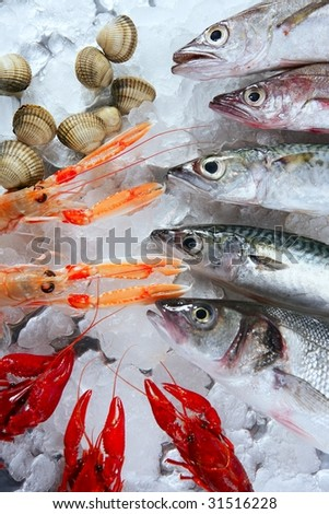 Seabass, mackerel, hake fish, nephrops, crabs and clams seafood