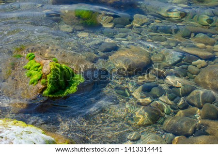 Seabed close up. Boulder covered with wet green algae. Large round stones at the bottom of the lake in clear, clear water. Glare from sunlight on the surface of the river. Selective focus image, summe