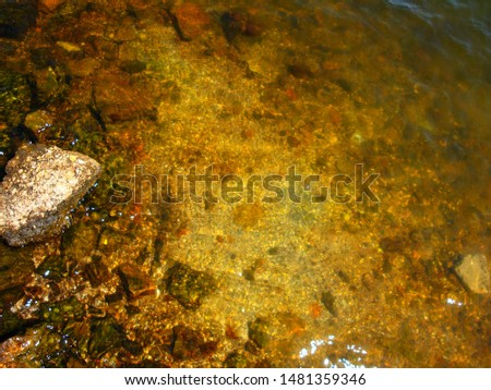 Seabed close up. Large round stones at the bottom of the lake in clear, clear water. Glare from sunlight on the surface of the river. Selective focus image, summer background, copy space.