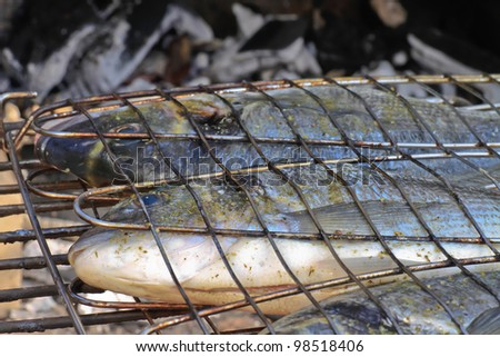 Seabream ready for barbeque on charcoal