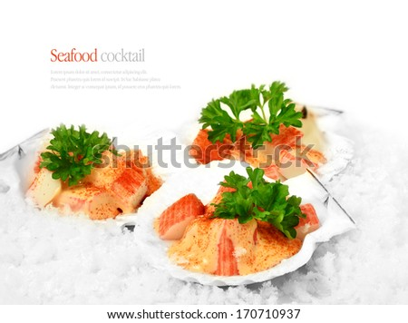 Seafood Cocktail served in scallop shells on a bed of ice. The perfect image for a fish restaurant menu cover. Copy space.