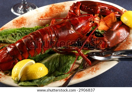 Seafood Lobster Dinner