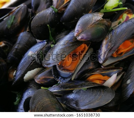 seafood mussel dish gourmet food