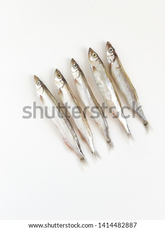 Seafood. Raw small sea fish, anchovies, smelt, capelin, isolated on white background