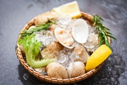 Seafood shellfish with ice frozen on basket / Fresh shell clam with herb ingredients for salad , enamel venus shell , saltwater clams