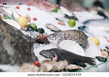 seafood window display #1224031939
