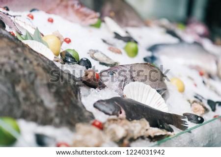 seafood window display #1224031942