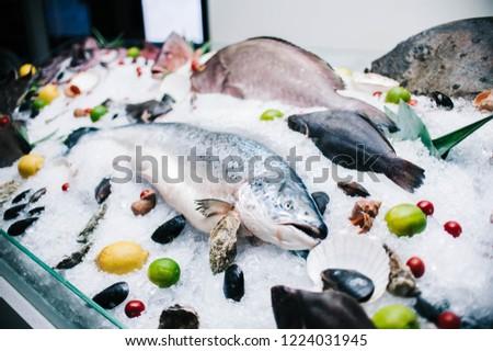 seafood window display #1224031945