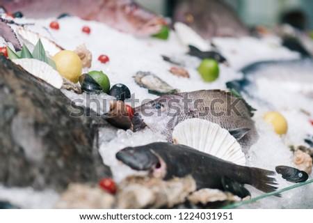seafood window display #1224031951