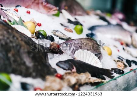 seafood window display #1224031963
