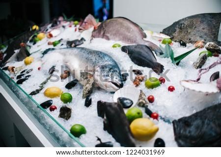 seafood window display #1224031969