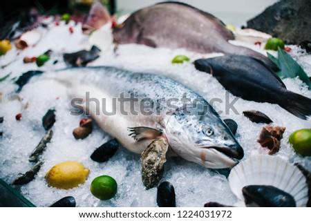 seafood window display #1224031972