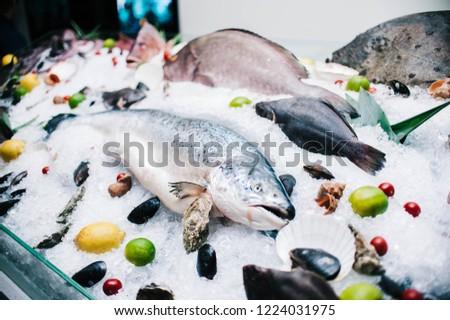 seafood window display #1224031975