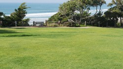 Seagrove recreation beach park in Del Mar, California USA. Seaside garden with lawn in waterfront resort. Green grass and ocean coast view from above. Picturesque coastline vista point on steep hill.