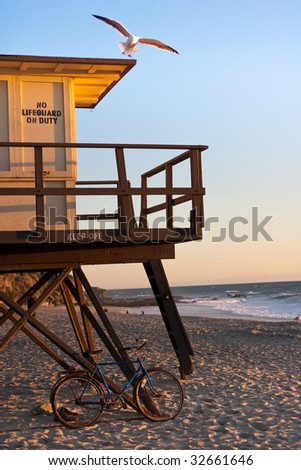 Seagull landing on lifeguard tower at Laguna Beach during sunset with bicycle in foreground