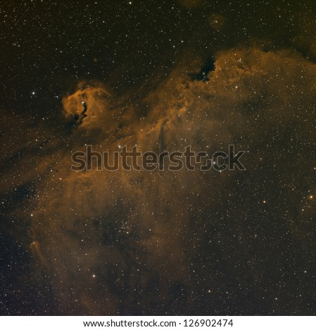 Seagull Nebula in Narrowband Color