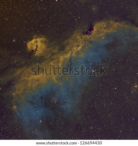 Seagull Nebula in the Hubble Palette