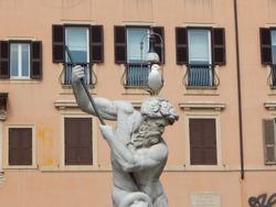 Seagull on the head of Neptune statue of Fontana di Nettuno (Fountain of Neptune) in Rome
