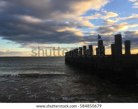 Seagull perched on an old wooden pier, Coney Island, Brooklyn, New York.  Silhouette of seagull and wooden pier.  Calm ocean waves lapping against the sandy beach at sunset. Stock fotó ©