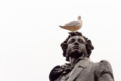 Seagull sits on the head of the monument to Alexander Pushkin on the square in front of the Russian Museum in St. Petersburg