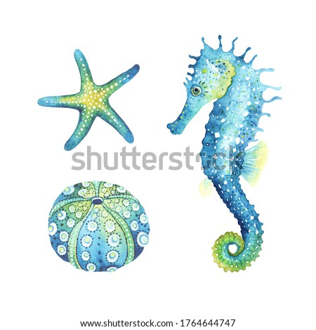 Seahorse, starfish and urchin shell, watercolor animal set illustrations. Ocean wildlife, design elements isolated on white background, print sea symbols. Foto stock ©